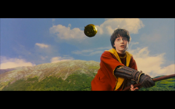 Harry Potter and the Sorcerer's Stone - 479