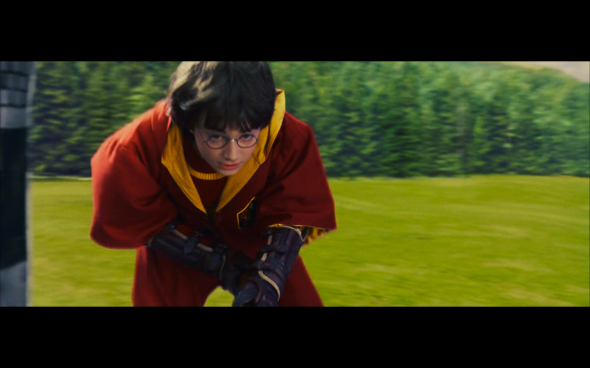 Harry Potter and the Sorcerer's Stone - 494