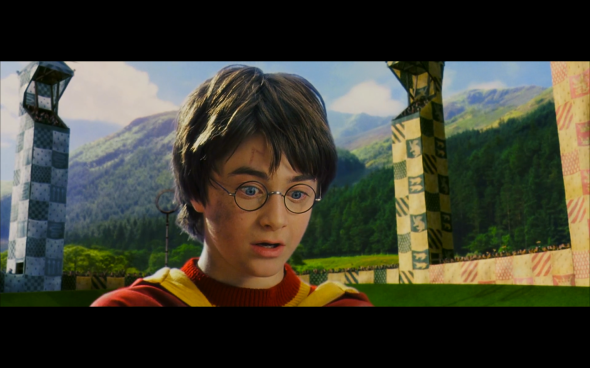 Harry Potter and the Sorcerer's Stone - 505
