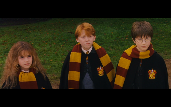 Harry Potter and the Sorcerer's Stone - 514