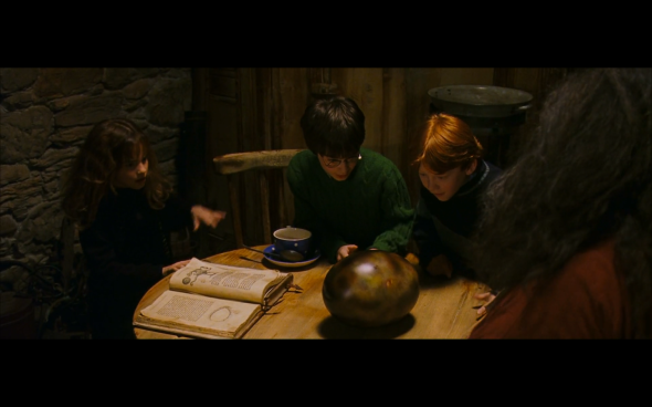Harry Potter and the Sorcerer's Stone - 576