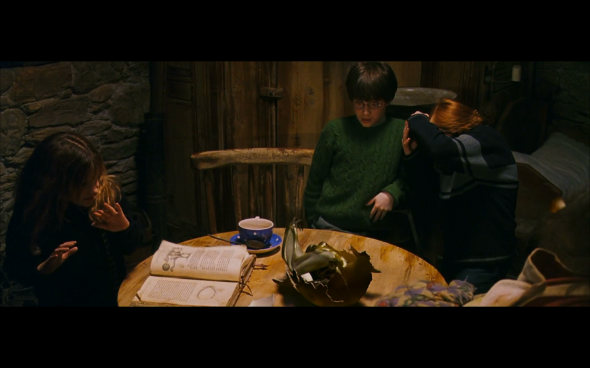 Harry Potter and the Sorcerer's Stone - 577
