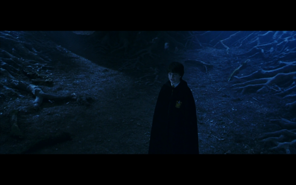 Harry Potter and the Sorcerer's Stone - 627