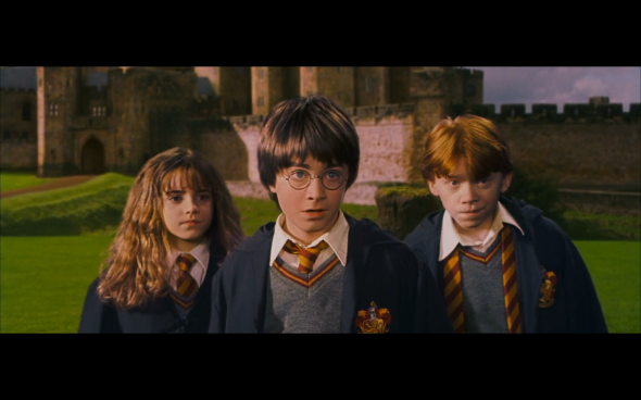 Harry Potter and the Sorcerer's Stone - 642