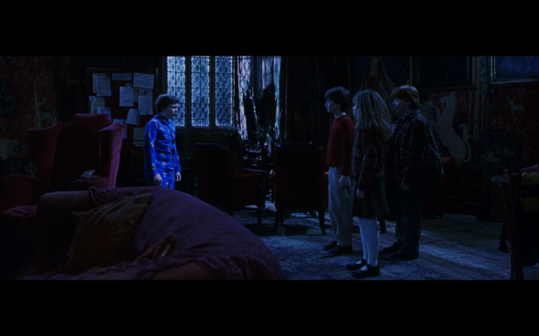 Harry Potter and the Sorcerer's Stone - 662