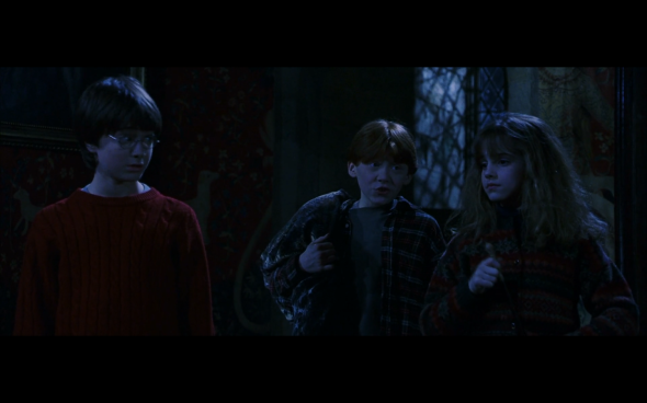 Harry Potter and the Sorcerer's Stone - 673