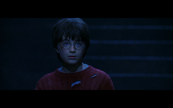 Harry Potter and the Sorcerer's Stone - 794