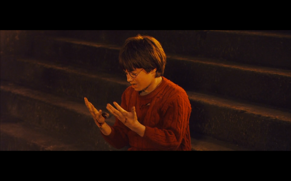 Harry Potter and the Sorcerer's Stone - 815