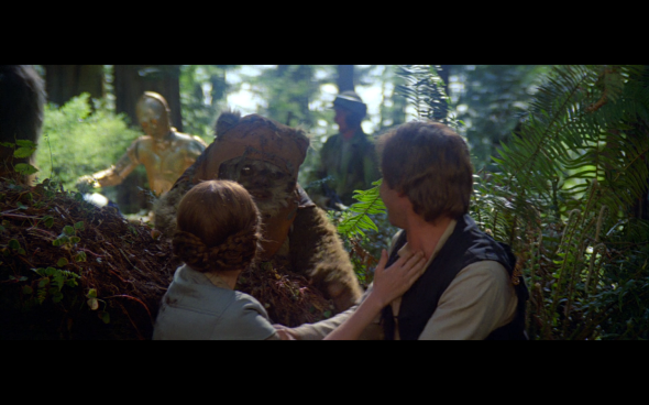 Return of the Jedi - 1206