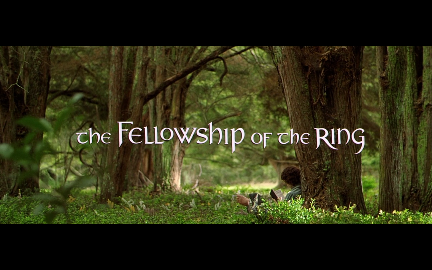 Movie capture for The Lord of the Rings: The Fellowship of the Ring