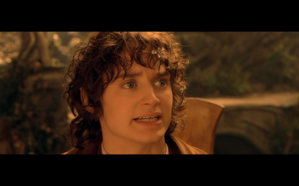 The Lord of the Rings The Fellowship of the Ring - 1011