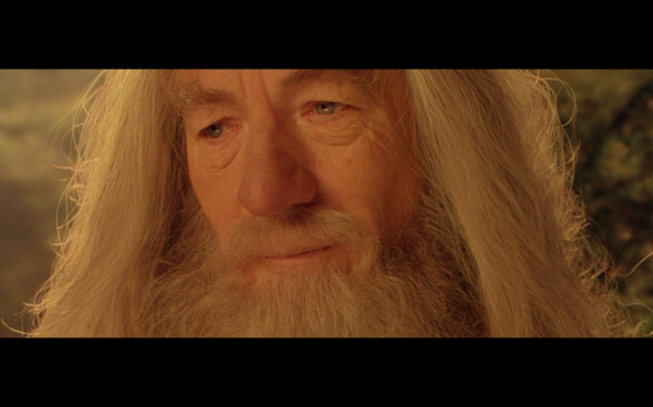 The Lord of the Rings The Fellowship of the Ring - 1018