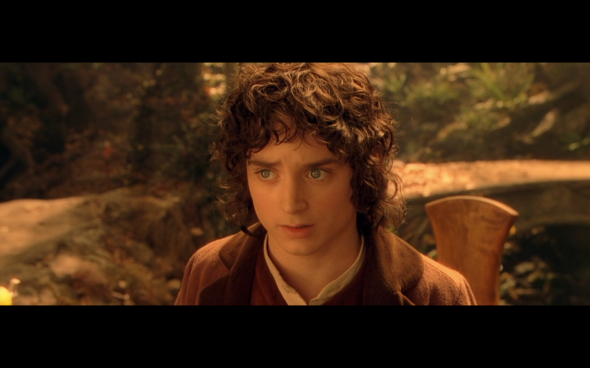 The Lord of the Rings The Fellowship of the Ring - 1021