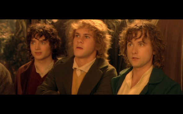 The Lord of the Rings The Fellowship of the Ring - 1036