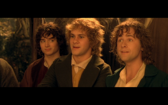 The Lord of the Rings The Fellowship of the Ring - 1041
