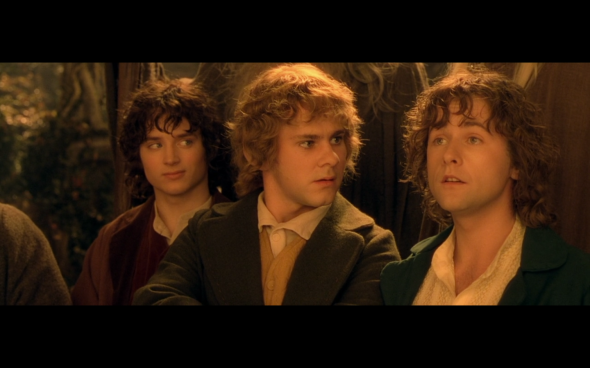 The Lord of the Rings The Fellowship of the Ring - 1042