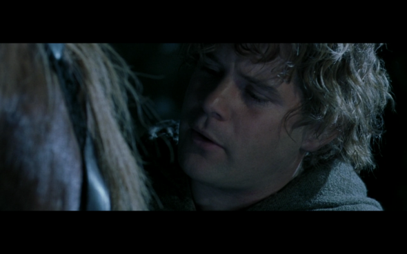 The Lord of the Rings The Fellowship of the Ring - 1159