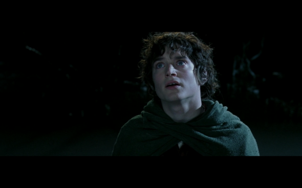 The Lord of the Rings The Fellowship of the Ring - 1162