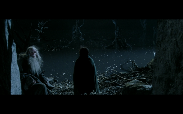 The Lord of the Rings The Fellowship of the Ring - 1165