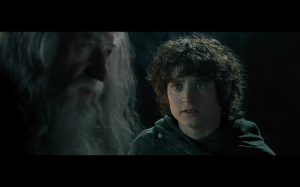 The Lord of the Rings The Fellowship of the Ring - 1210