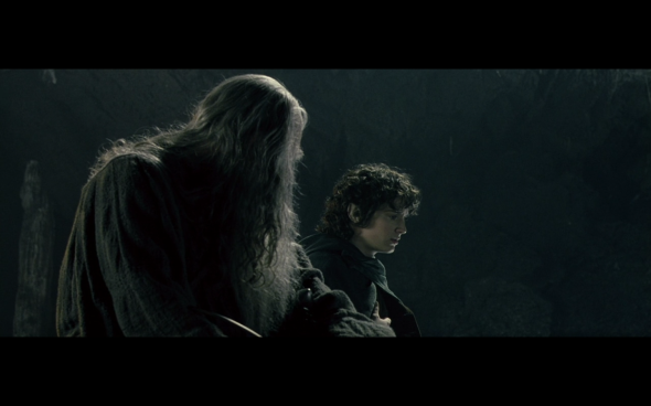 The Lord of the Rings The Fellowship of the Ring - 1218