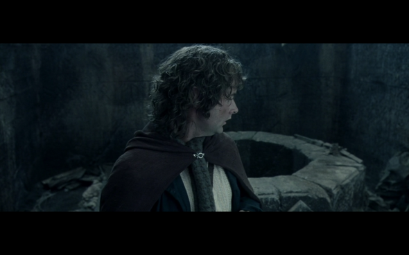 The Lord of the Rings The Fellowship of the Ring - 1257