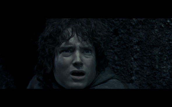 The Lord of the Rings The Fellowship of the Ring - 1309