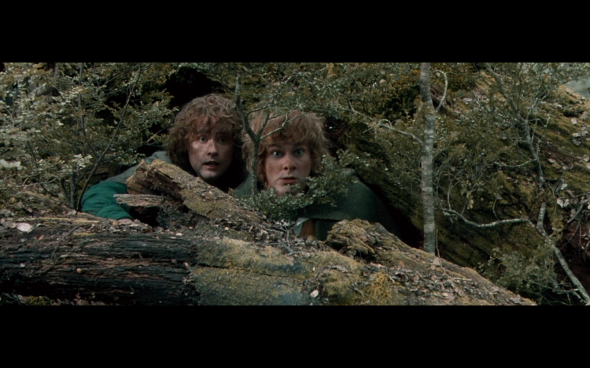 The Lord of the Rings The Fellowship of the Ring - 1666