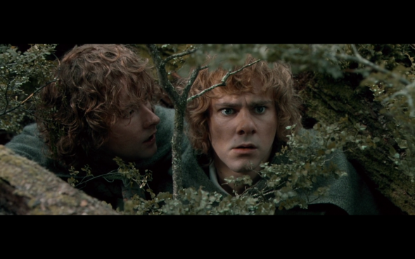 The Lord of the Rings The Fellowship of the Ring - 1668