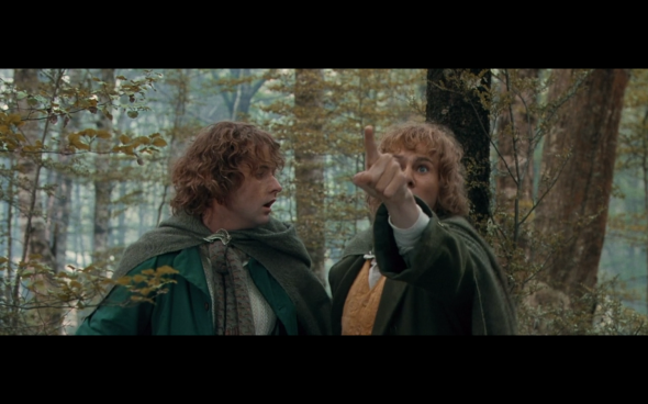 The Lord of the Rings The Fellowship of the Ring - 1672