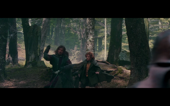 The Lord of the Rings The Fellowship of the Ring - 1679