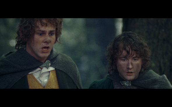 The Lord of the Rings The Fellowship of the Ring - 1704