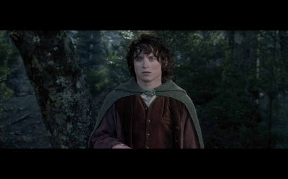 The Lord of the Rings The Fellowship of the Ring - 1766