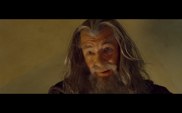 The Lord of the Rings The Fellowship of the Ring - 289