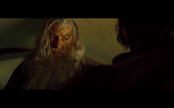 The Lord of the Rings The Fellowship of the Ring - 381