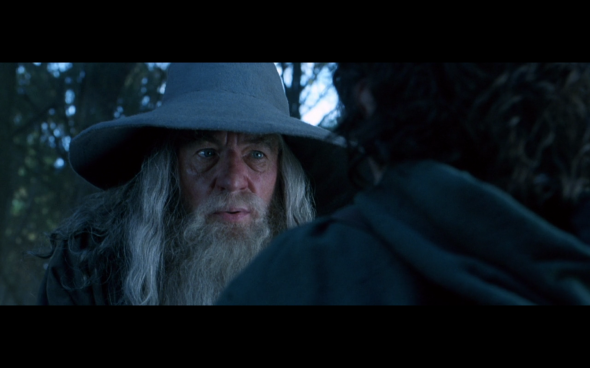 The Lord of the Rings The Fellowship of the Ring - 402