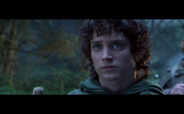 The Lord of the Rings The Fellowship of the Ring - 403
