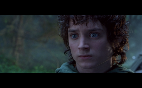 The Lord of the Rings The Fellowship of the Ring - 405
