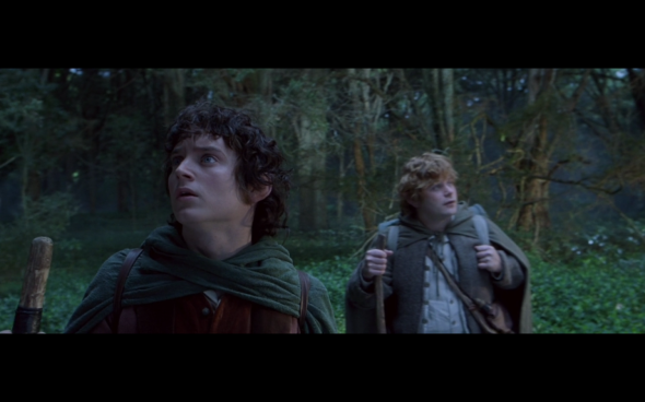 The Lord of the Rings The Fellowship of the Ring - 407