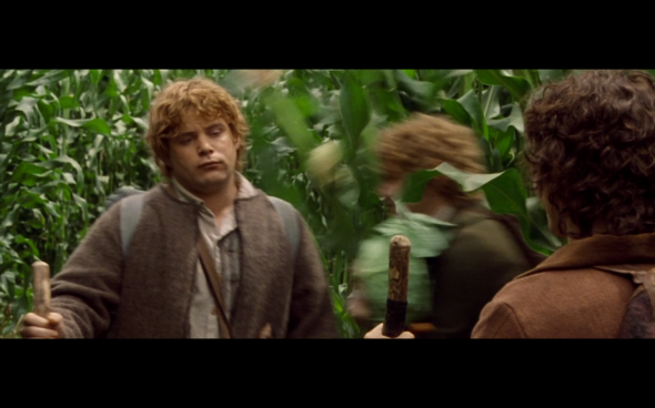 The Lord of the Rings The Fellowship of the Ring - 506