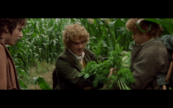 The Lord of the Rings The Fellowship of the Ring - 509