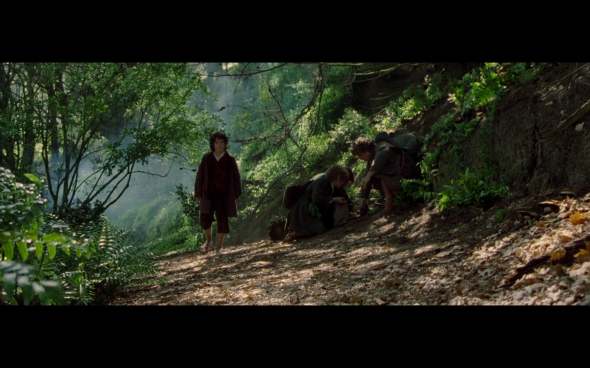 The Lord of the Rings The Fellowship of the Ring - 518
