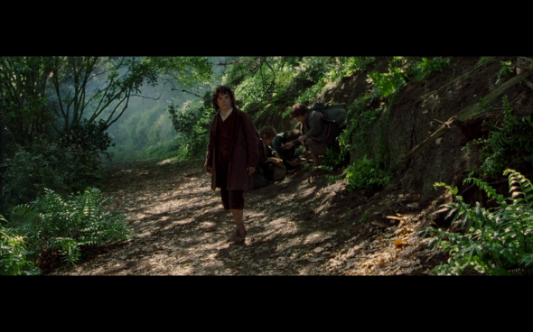 The Lord of the Rings The Fellowship of the Ring - 519