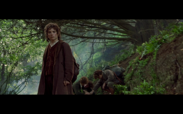 The Lord of the Rings The Fellowship of the Ring - 525