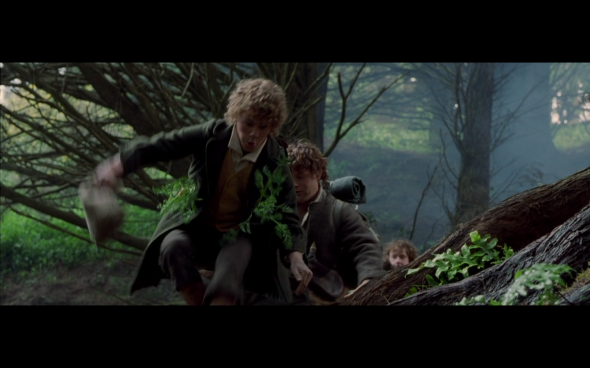 The Lord of the Rings The Fellowship of the Ring - 526