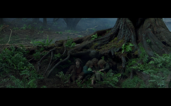 The Lord of the Rings The Fellowship of the Ring - 528