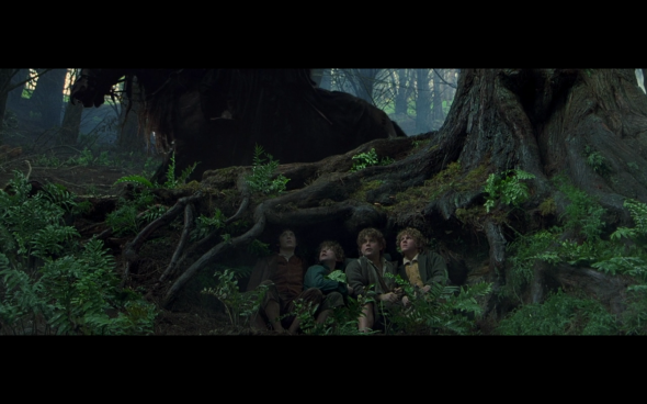 The Lord of the Rings The Fellowship of the Ring - 530
