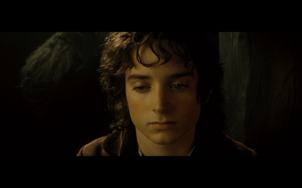 The Lord of the Rings The Fellowship of the Ring - 604