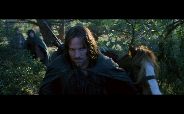 The Lord of the Rings The Fellowship of the Ring - 687