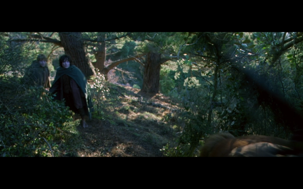 The Lord of the Rings The Fellowship of the Ring - 689